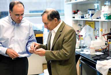 MIT professors have developed the first wirelessly controlled microchip that  can be implanted into a patient to deliver drugs in accordance with a  prescribed regimen.